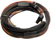 IO 12 Expander Box A - CAN Based 12 Channel inc Flying Lead Harness 2.5m (includes Black 600mm CAN Cable)