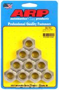 NASCAR Speed Nut