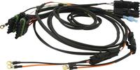Wiring Harness - Ignition - Weatherpack - Dual Ignition Box/Quickcar Switch Panels - Kit